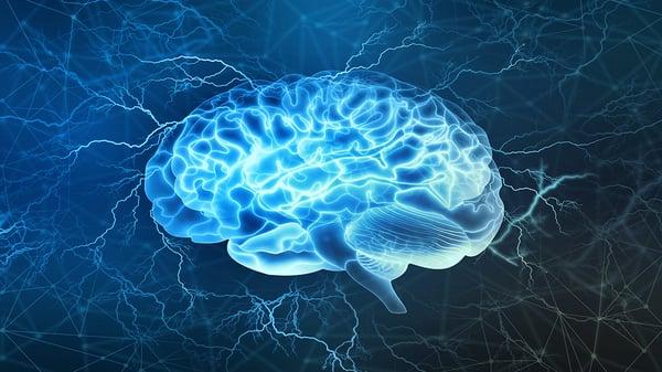 neurociencia-pnl