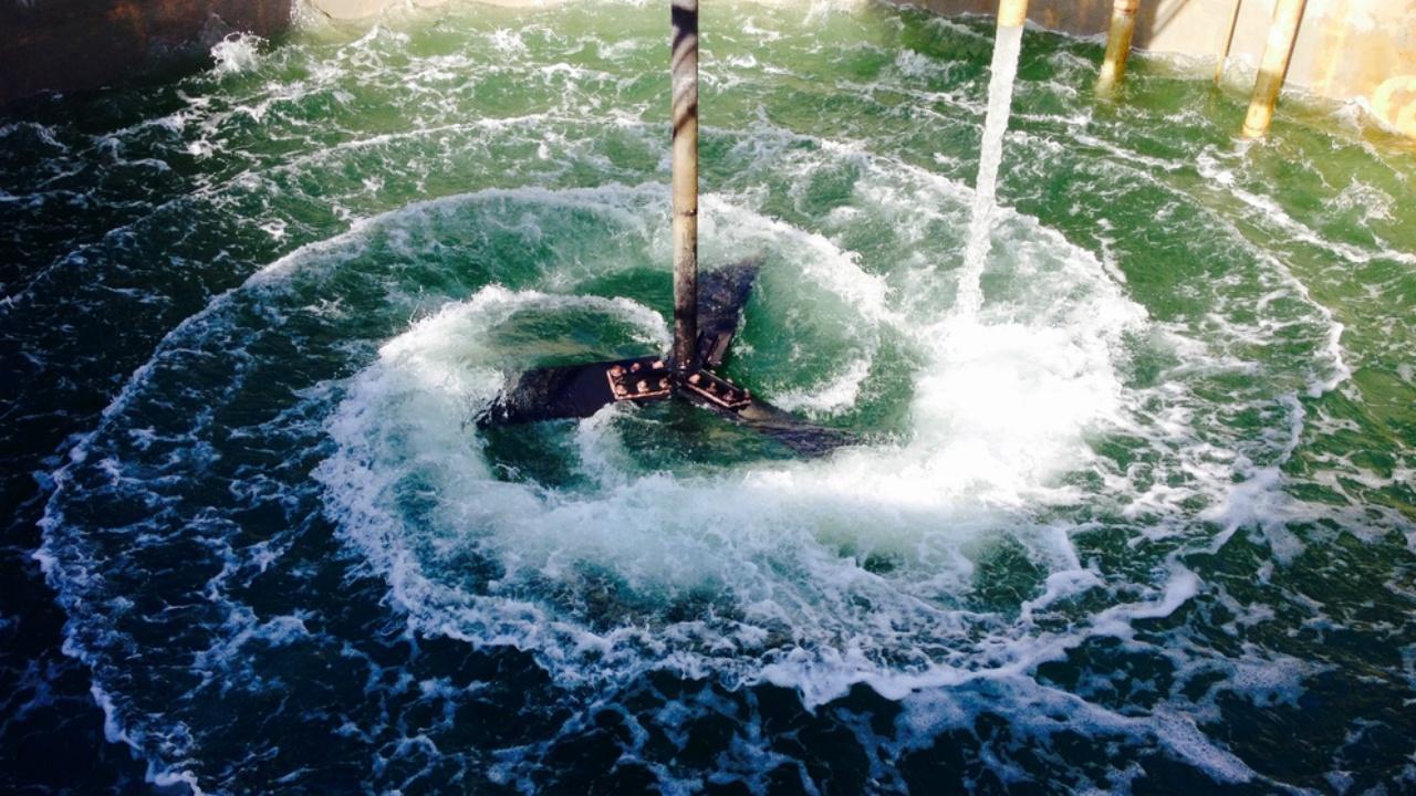 La gestión pública del agua: una oportunidad de especialización